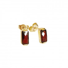 Gold earrings, garnet