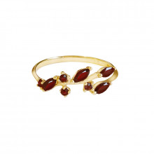Gold ring, granat